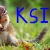 The KSI Squirrel
