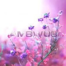 Ambwub